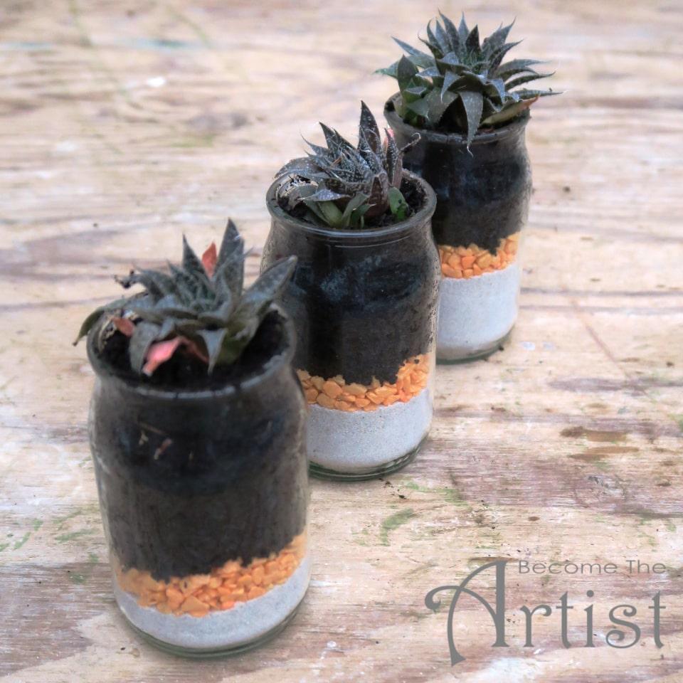 déco avec des jeunes plantes grasses dans des pots de yaourt en verre, ambiance zen