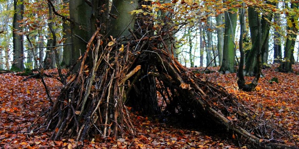 activités forêt construire une cabane