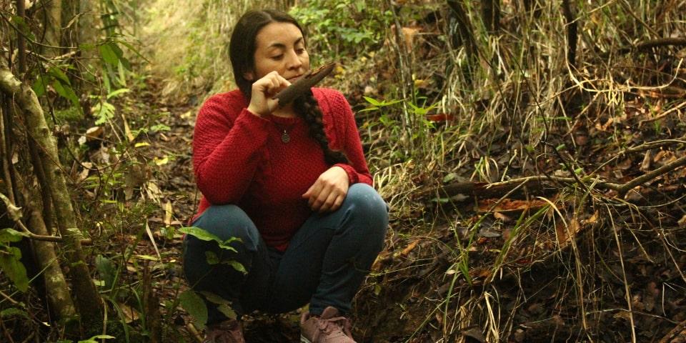 activités forêt sentir la nature