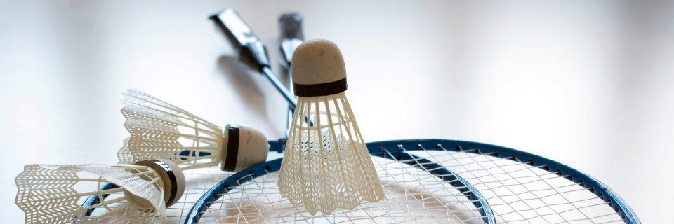 badminton sport pour deux